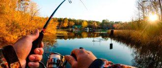 Хорошие лески для рыбалки
